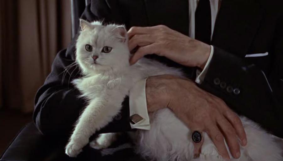 James Bond – So many Blofeld so little time